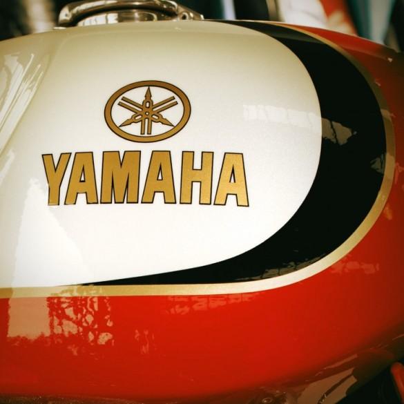 Yamaha-XV950-8-740x740